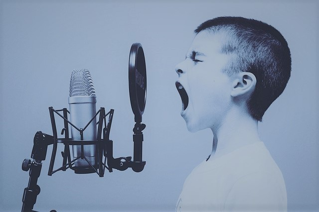 Read more about the article 10.2 Finding Your Voice